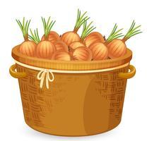 Ein Korb mit Zwiebeln