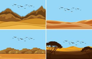 Una serie di paesaggi desertici