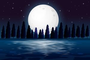 Una escena nocturna de bosque silueta.