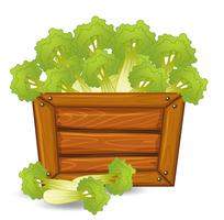 Green celery on wooden board