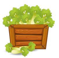 Green celery on wooden board