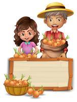 Agricultor segurando a cebola na placa de madeira