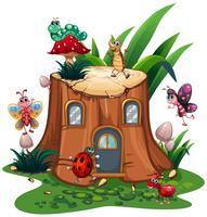 Viele Insekten um den Baumstumpf