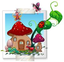 Beaucoup d'insectes au champignon