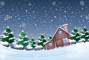 Ett vinterlandskap på natten