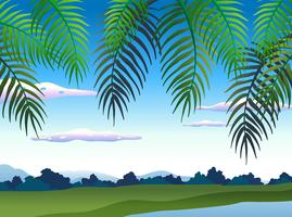 Bela natureza paisagem debaixo da árvore