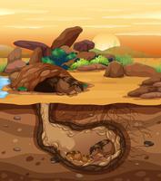 Een cavia-familie die ondergronds leeft