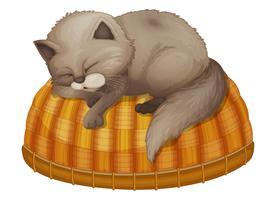 Cat sleeping vector