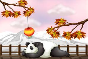 Un ours endormi et une montagne de neige