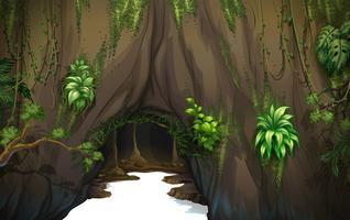 Una cueva