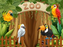 Fågel i djurparken