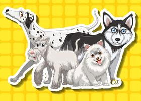 Four cute dogs on yellow background
