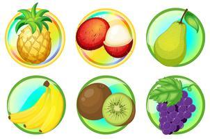 Frutta fresca su distintivi rotondi