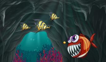 Fish swiming under the ocean