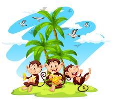 Drei Affen, die Bananen essen