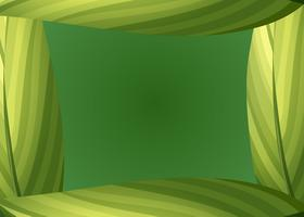 Uma fronteira de folhas verdes