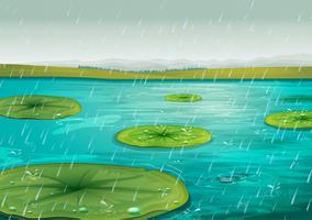 Rain on the pond
