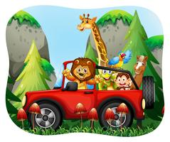 Wild animals riding on jeep