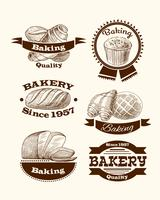 Pastry and bread signs vector