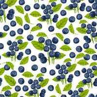 Blåbärs sömlöst mönster