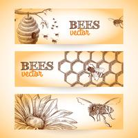 Bee banner sketch vector