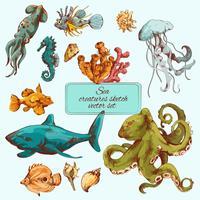 Bosquejo de criaturas marinas de colores.