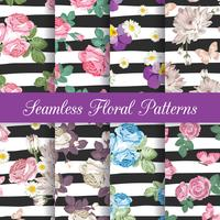 Set collection of floral seamless patterns with chrysanthemums, chamomiles, pansies, roses and butterflies on black and white striped background