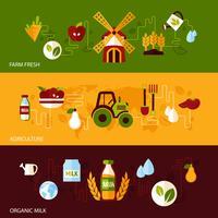 Conjunto de banners de agricultura