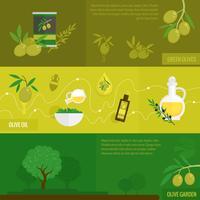 Set di banner di olive