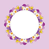 chamomile and pansies frame on pink purple background