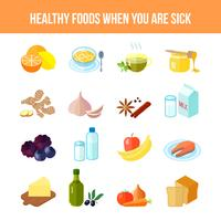 Healthy Food Icon Flat vector