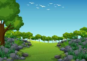 Cena de fundo com árvores no campo