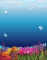 Uma bela cena subaquática
