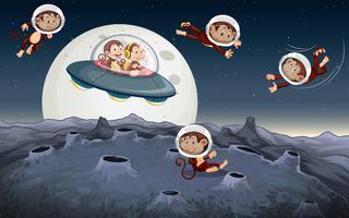 Viaje del mono en el espacio