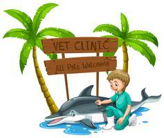 Ein Vet Doctor Checkup Dolphin im Zoo