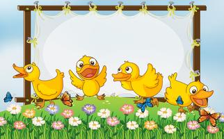 Board template with four ducks in garden