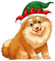 Cão fofo usando chapéu de bobo da corte
