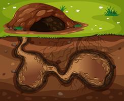 Un hábitat subterráneo de animales