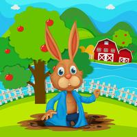 A bunny at the garden vector