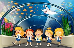 Estudiantes visitando el acuario con muchos peces.