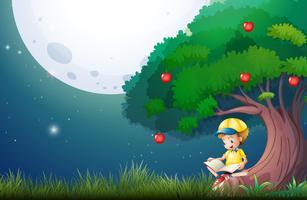 Boy reading book under apple tree