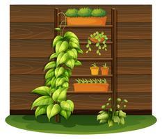 Gardening scene with flowerpots on shelves