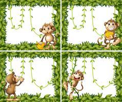 Design de moldura com macacos e videira