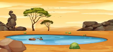 Scene with water hole on the ground
