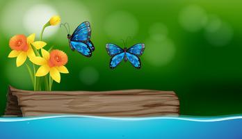 Dos mariposas volando sobre el río