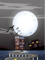 Haunted houses on fullmoon night
