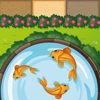 Tres peces en el estanque