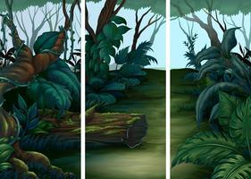 Scene della foresta con molti alberi