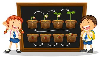 Kids and diagram of growing plant on board