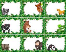 Conjunto de animales en cuadros de naturaleza.